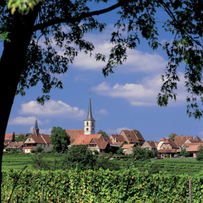 Visit-Mittelbergheim-The-most-beautiful-villages-World