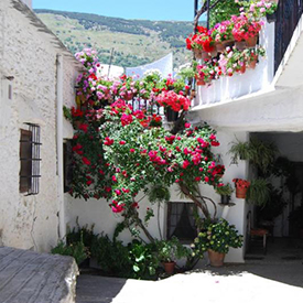 Capileira-rural-tourism-The-most-beautiful-Villages-of-the-World