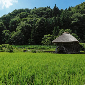 Takko-Machi-Tourism-The-most-beautiful-villages-of-the-world