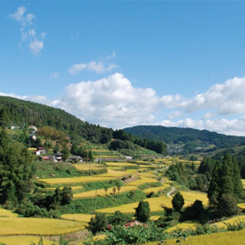 Motoyama-cho-Town-Rural-Tourism-The-most-beautiful-villages-of-the-world
