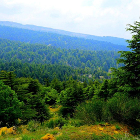 Hadath-el-Jebbeh-Tourism-Lebanon-The-most-beautiful-villages-of-the-world-